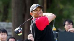 GOLF: TIGER WOODS IS TOAST OF ALL AS PRESIDENT CUP BEGINS
